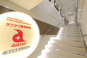 ダクタリ動物病院東京医療センター2